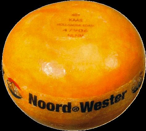 Bestel Edammer 40+ Noord-Wester jong online bij FNZ Kaas